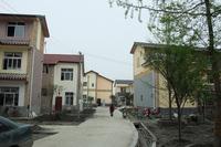 20100419-1_sisen.jpg