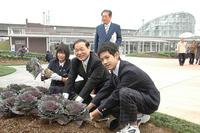 20101102-1_hana-terrace.jpg