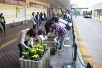 20110519-1_ekimae-planter.jpg