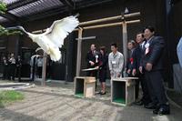 20110531-1_toki.jpg