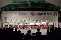 20110820-2_wasima-maturi.jpg