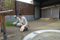 20111016-3_toki.jpg