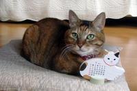 20111226-1_maron-calendar.jpg