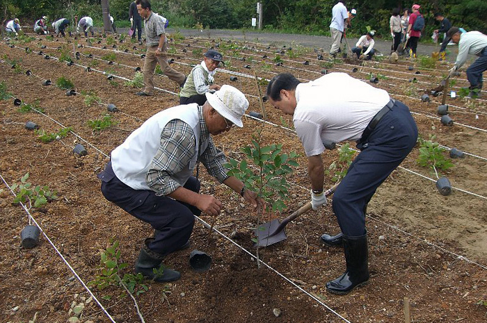http://tamionet.com/blog/image/20100923-1_happoudai.jpg