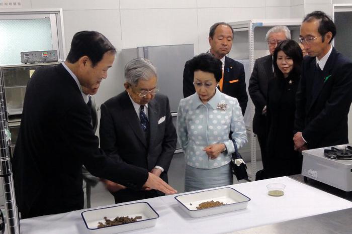 http://tamionet.com/blog/image/20120515-1_hitachinomiya.jpg